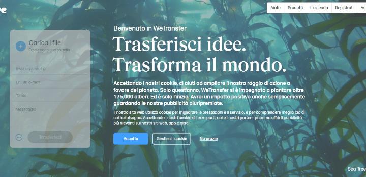 WeTransfer: guida completa per condividere file