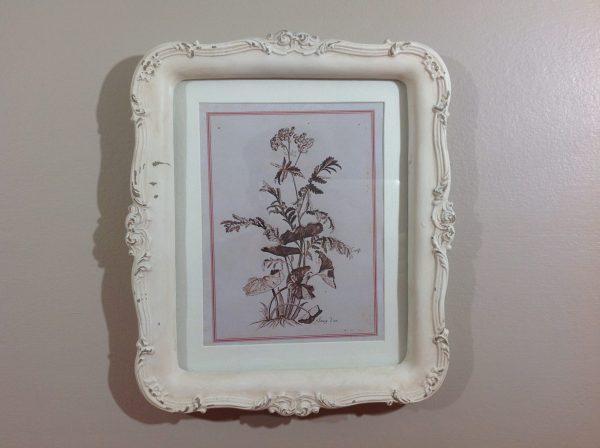 Angelica Home & Country Quadro con cornica panna serie botanica