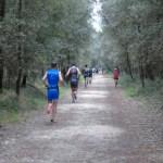 La mezza maratona nel bosco all'Irondelta di Primavera 2016