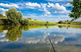 Il Pescatore di Successo che rispetta l'ambiente – parte 2