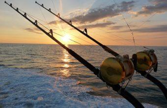 Il Pescatore di Successo che rispetta l'ambiente – parte 1