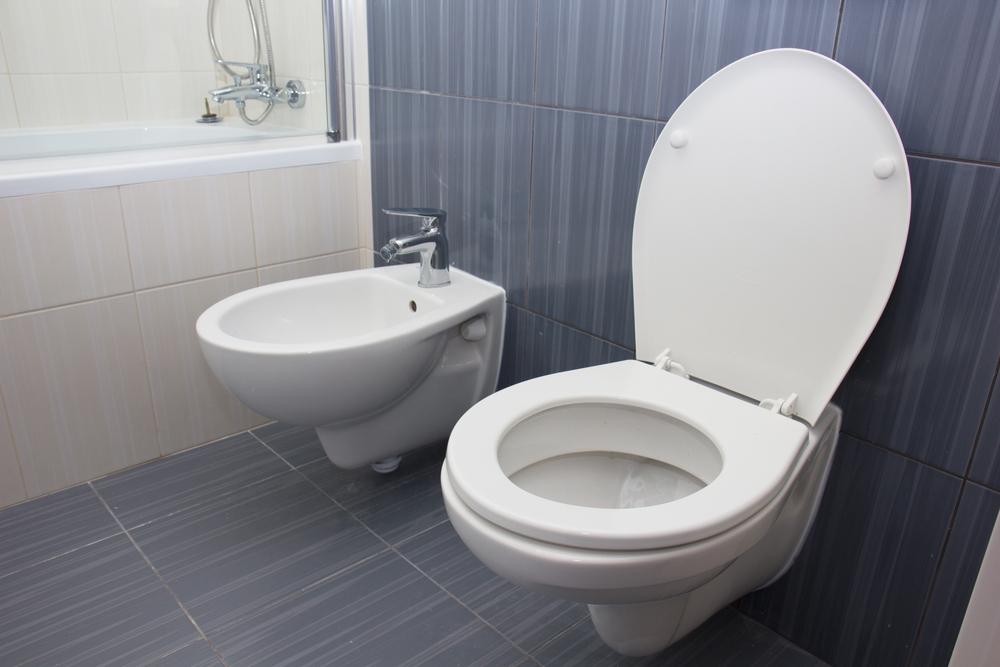 carrelage wc prix lequel choisir et