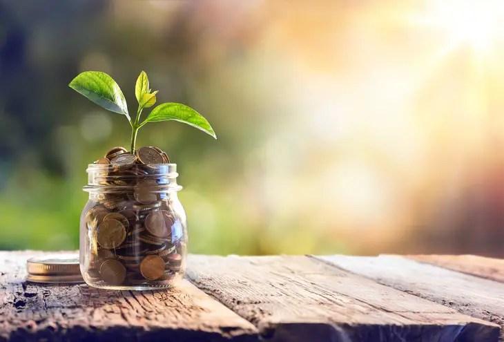 Money Saving Tips for fresher