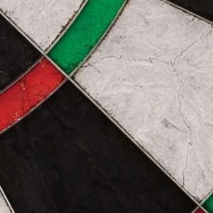 Viper Razorback Sisal Dartboard Detail   moneymachines.com