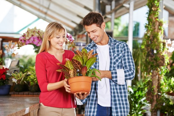 couple buying plants at a garden centre