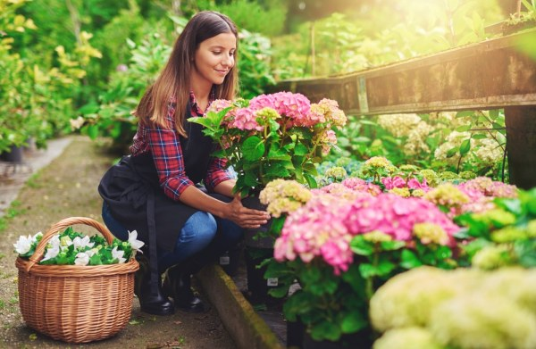 Woman choosing flowers at garden centre