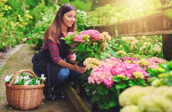 Woman choosing flowers at garden centre
