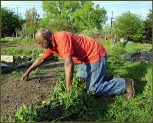 moneymagpie_money-making-ideas-for-the-over-60s_gardening