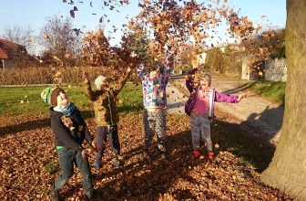 10 FREE things to do this autumn half term