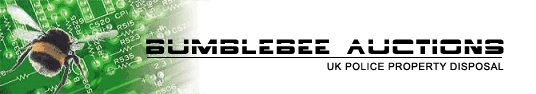 Bumblebee Auction Logo