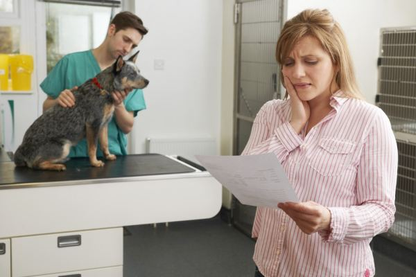 Woman looking at a vet bill worriedly