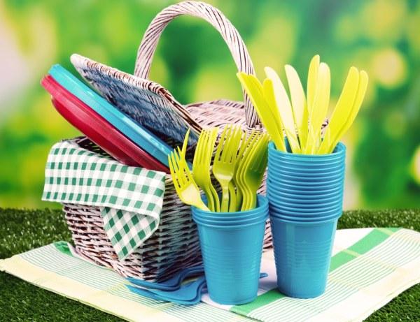 Plastic picnic dinnerware