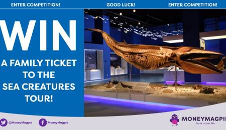 Win a family ticket to the Sea Creatures tour