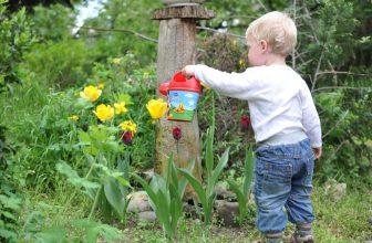 kids gardening advice