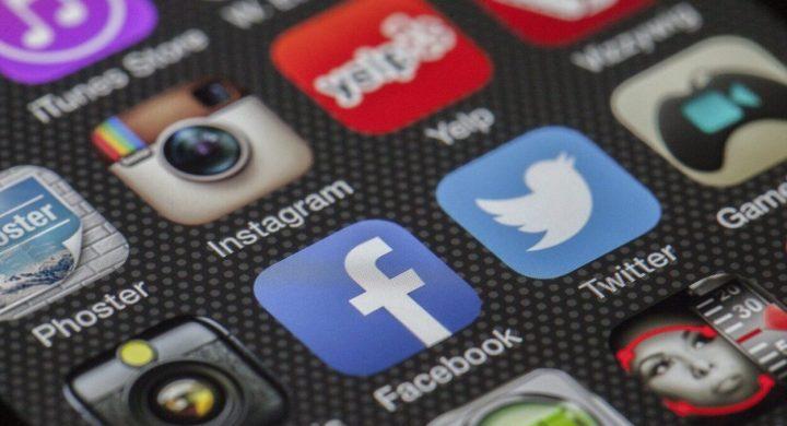 social media gardening