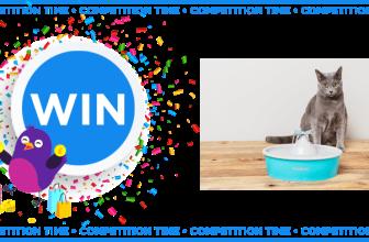 Win a PetSafe® Drinkwell® Butterfly Pet Fountain