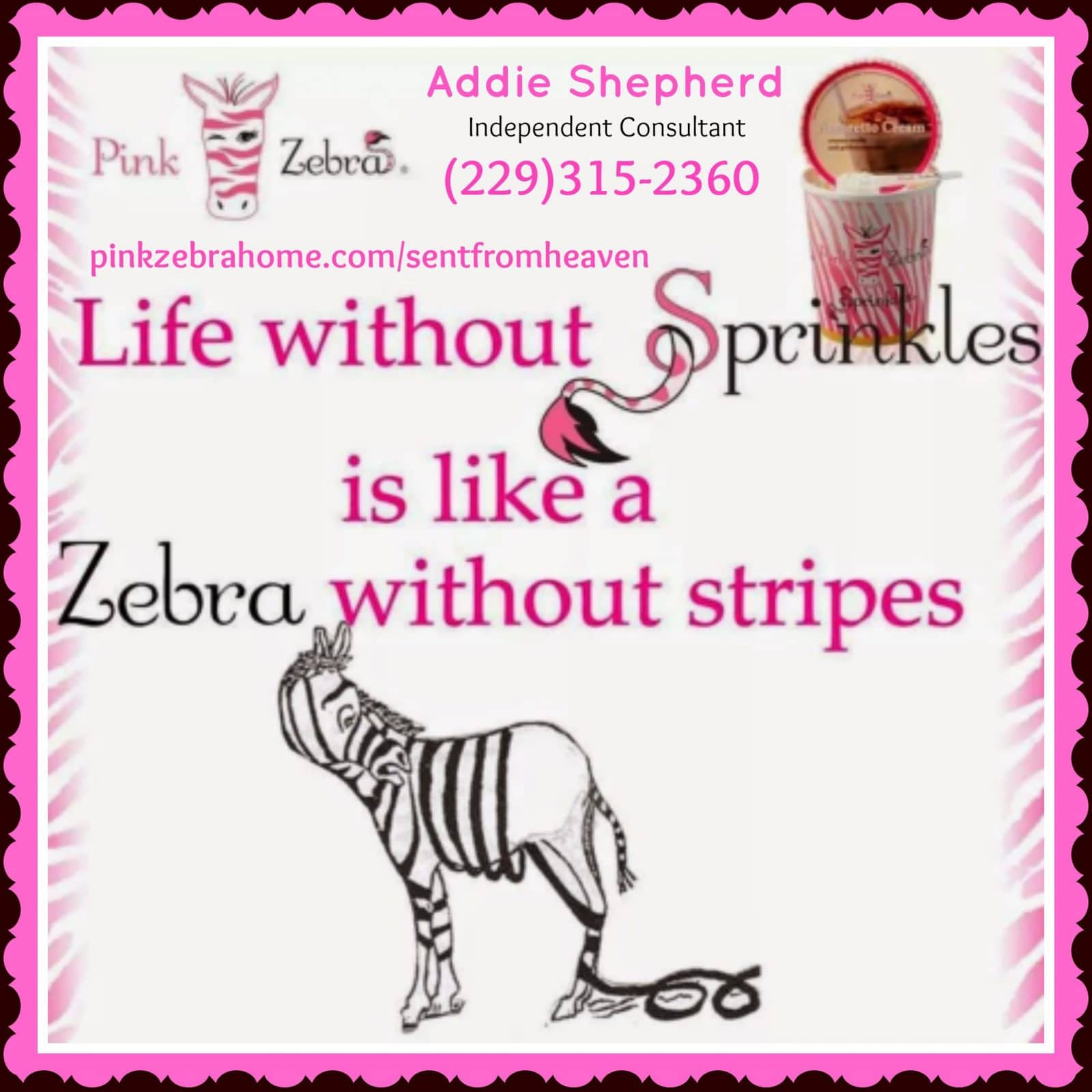Pink Zebra Work at Home Business