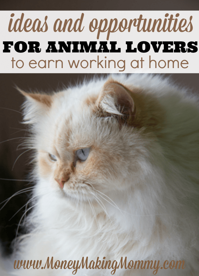Ideas for Animal Lovers to Earn Working at Home