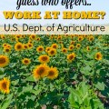Telecommuting Jobs with the US Dept. of Agriculture