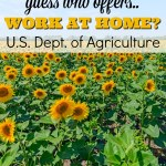 US Department of Agriculture: Offers Work at Home Jobs
