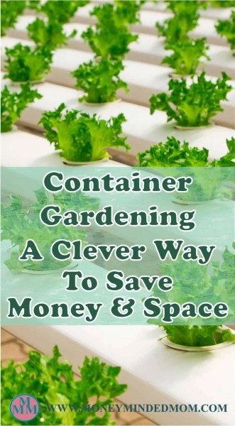 Container Gardening - A Clever Way to Save Money and Space ~ Gardening and growing your own food is a great way to save money and you don't need a huge space either. Read on to learn all the ins and outs of container gardening