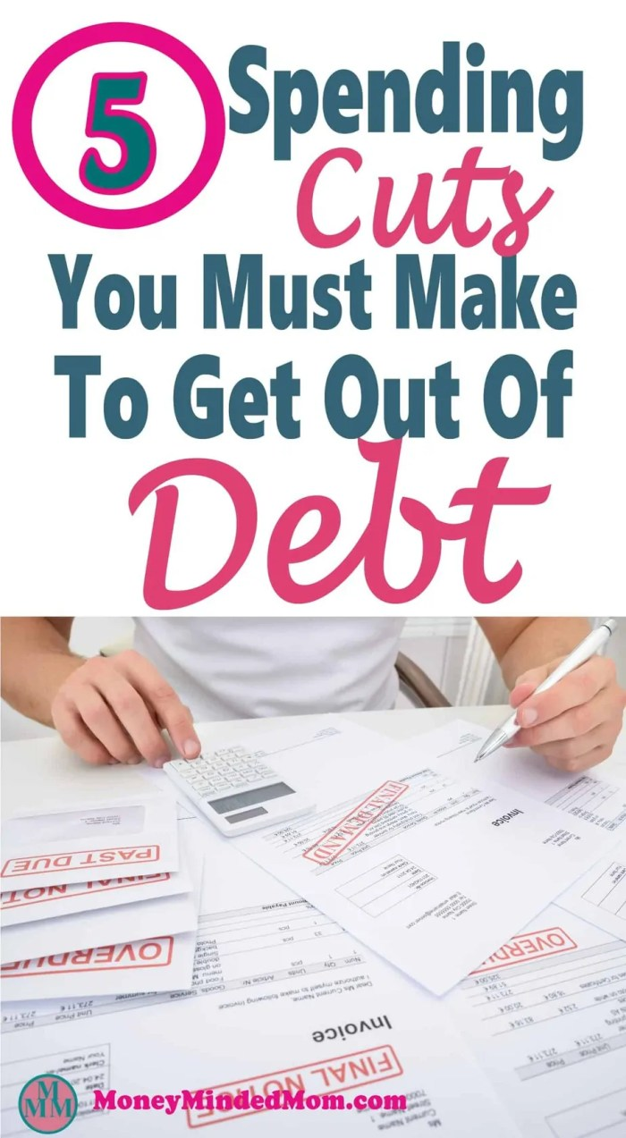 Debt Payoff ~ Spending Cuts You Must Make When Getting Out Of Debt ~ Getting out of debt is hard, if you want to have a better financial future the you are going to need to make sacrifices. There are some spending cuts that will need to be made to save money and control your budget. Read on for some great tips on how to control you spending to get out of debt. Debt | Get out of Debt | Debt Free | How to Get Out of Debt | Money