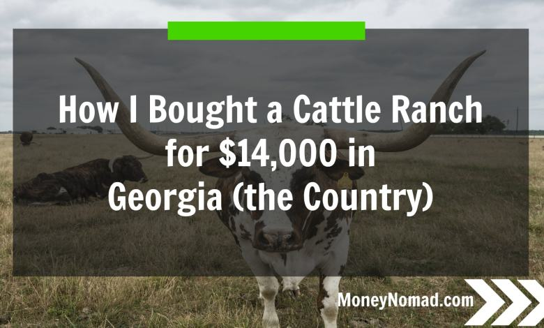 How I Bought a Cattle Ranch for $14,000 in Georgia (the Country)