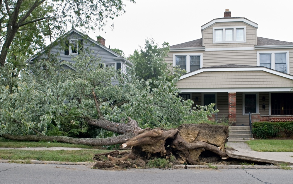 storm damage, hurricane, extreme weather