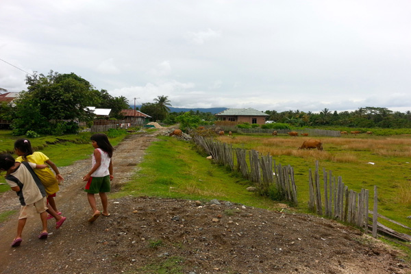 Anak-anak tengah bermain di jalan Desa Baho Makmur. Sepanjang mata memandang lahan sawah tinggal ditumbuhi rumput dan ilalang yang sebagian mengering. Kala kemaran debu memenuhi desa ini. Bagaimana masa depan anak-anak ini? Foto: Sapariah Saturi