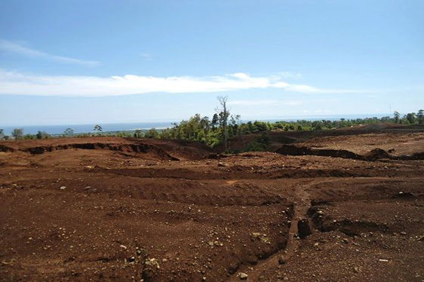 Hamparan tanah luas ini dulu pepohonan sebelum digali Bintang Delapan, salah satu sagu yang menjadi sumber hidup warga. Namun, kini tinggal cerita....Foto: Christopel Paino
