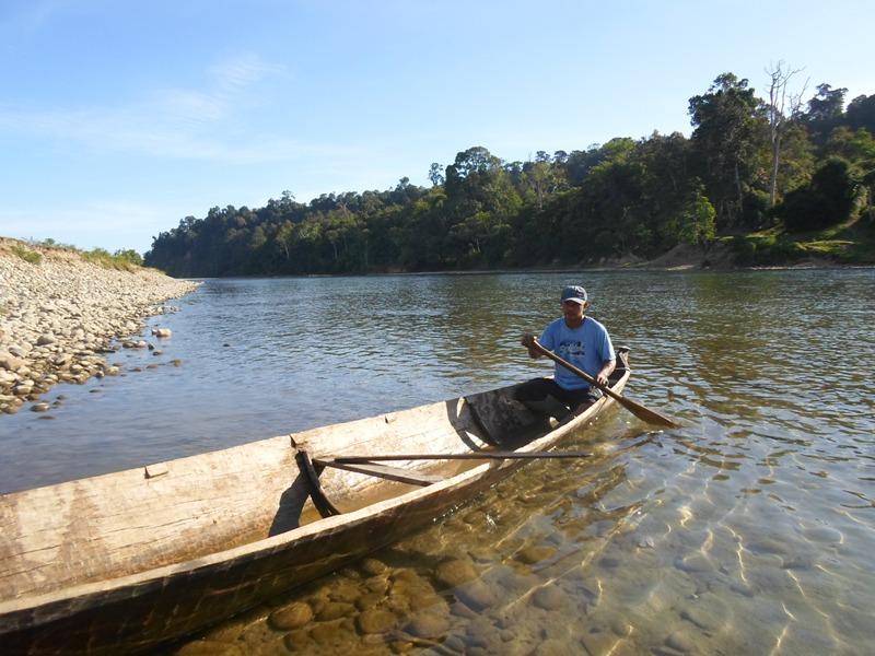 Inilah satu-satunya transportasi ke PLG Seblat dari Desa Suka Baru. Foto: Taufik Wijaya