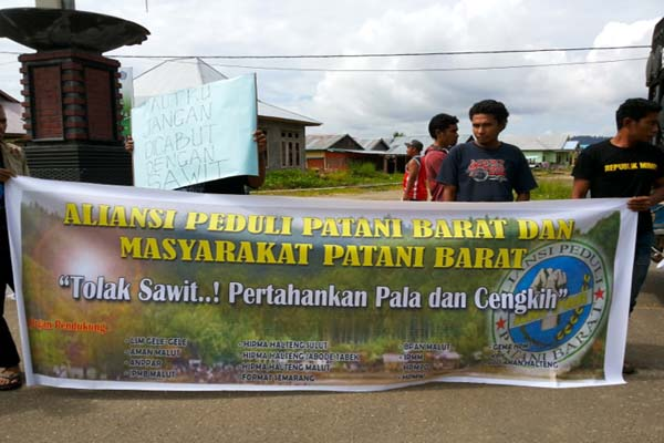 Aksi gabungan berbagai organisasi dan masyarajat adat Patani Barat, mendesak Pemerintah dan DPRD Halmahera Tengah menolak investasi sawit yang bakal 'membersihkan' kebun pala dan cengkih warga. Foto: AMAN Malut