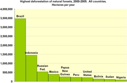 Image result for deforestation over the past 100 years