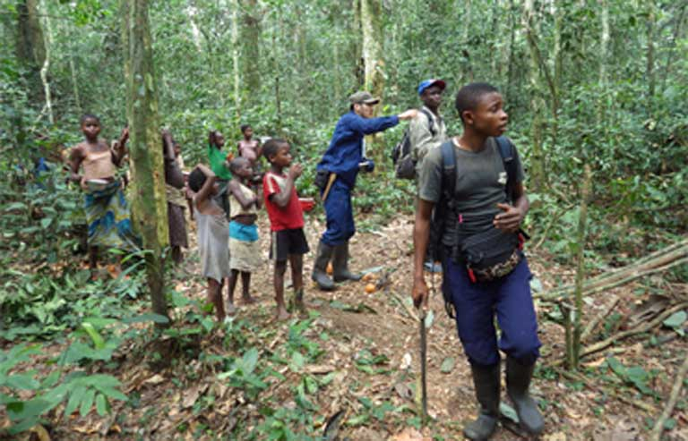 Local children collecting caterpillars in the forest and watching bonobos along with researchers. Photo by Takeshi Furuichi