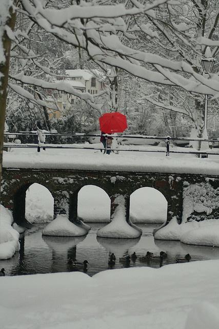 Red Umbrella, Guildford, England