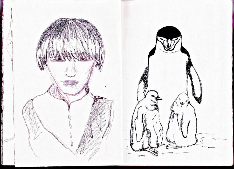 Sketchbook | Monica Lerda | pinguino