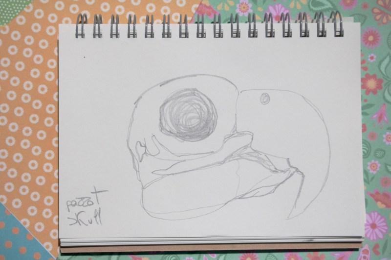 Sketchbook | Monica Lerda | 9