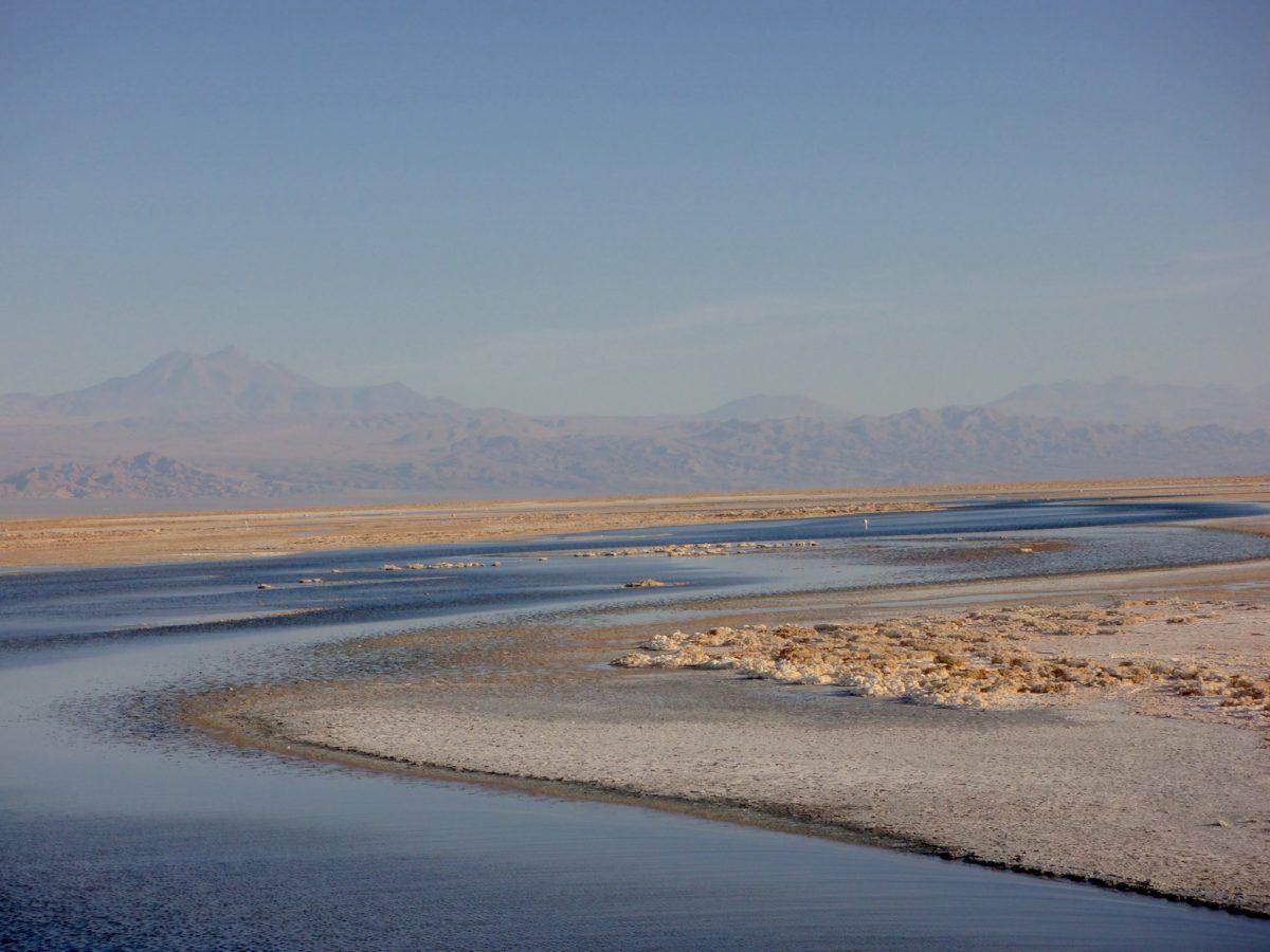 Os Salares e as Lagoas Altiplânicas. Deserto do Atacama (parte3)