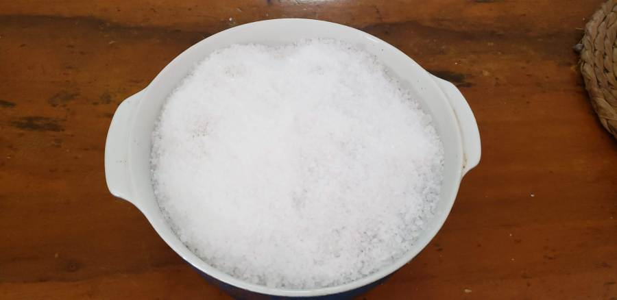 cupim na crosta de sal