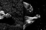 6.-yggdrasill-monika-kadlerl