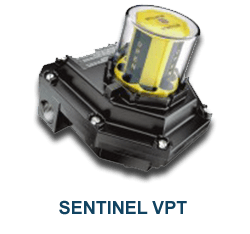 sentinel_175_2