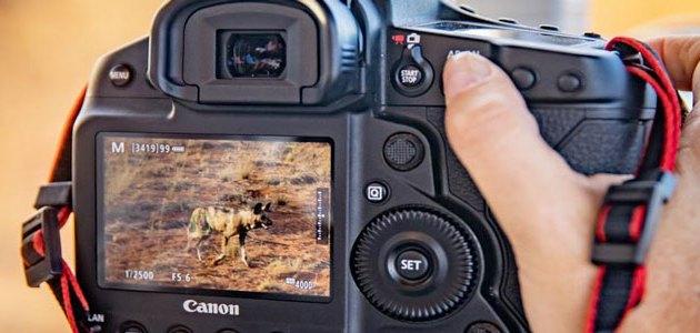 Canon Italia protagonista al Cortona On The Move