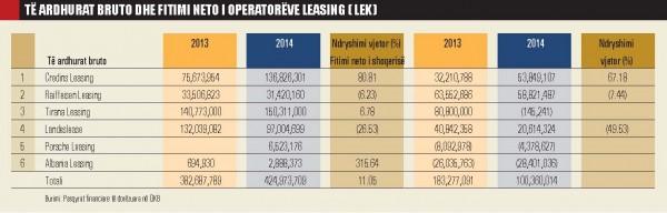 Te ardhurat bruto dhe fitimi neto-leasing