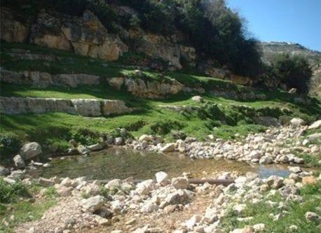 La reserva natural de agua de Al-Zarqa.