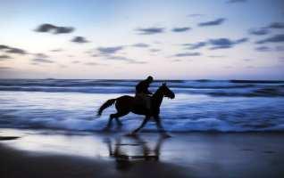 CIUDAD DE GAZA, GAZA - el 17 de noviembre: Un hombre palestino monta un caballo en la playa de Gaza el 17 de noviembre de 2016 en la ciudad de Gaza, Gaza. (Ali Jadallah - Agencia Anadolu)