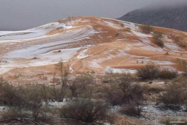 AIN SEFRA, ARGELIA- El desierto cubierto de nieve por primera vez en 40 años. ¿No parece un café latte con caramelo?