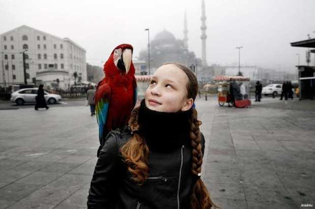 ESTAMBUL, TURQUÍA- Un simple paseo con mi loro