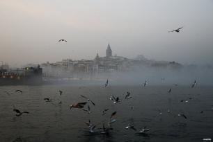 """ESTAMBUL, TURQUÍA - Bueno, este es el tiempo de las """"aves"""""""