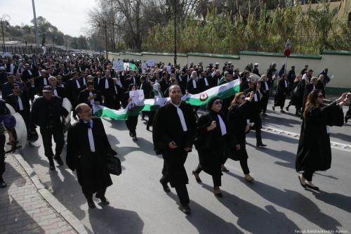 Argelia: Los abogados reiteran los llamamientos a la independencia judicial