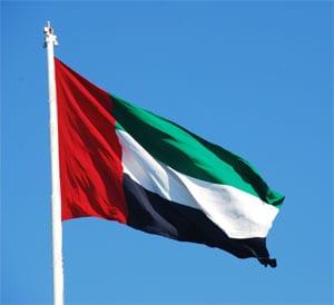 Emiratos Árabes Unidos congela los activos de los disidentes que…